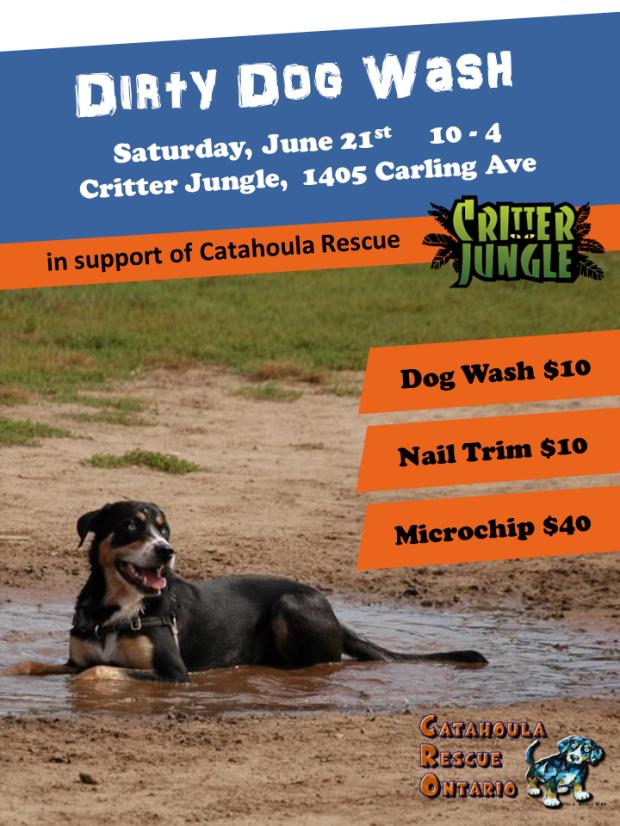 Dogwash Poster Final1